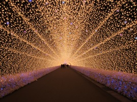 Japanese botanical garden, winter wonderland LED lighting